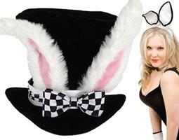 Bunny / Rabbits