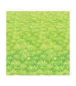 Backdrop - Meadow